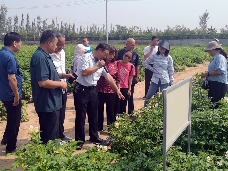山西省马铃薯产业技术体系建设暨产业发展研讨会在同召开
